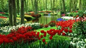 paradise-garden-wallpaper1-1024x576